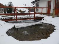 Zahradní jezírko v zimě